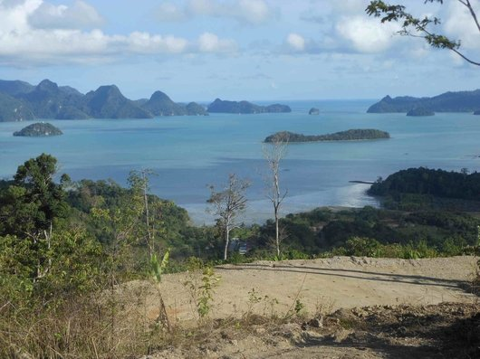 View from Villa for sale Langkawi