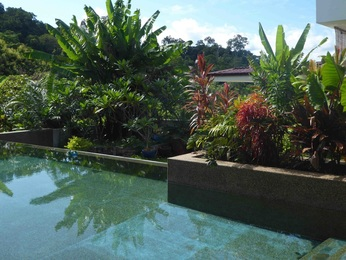Villa for Sale Langkawi Private natural pebble pool